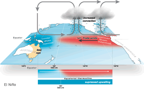 The circulation patterns typically associated with an El Nino, both at the surface and underwater. (Australian Bureau of Meteorology)