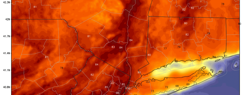 We have seen widespread low to mid 80s away from the immediate coast this afternoon (Courtesy of Weatherbell).