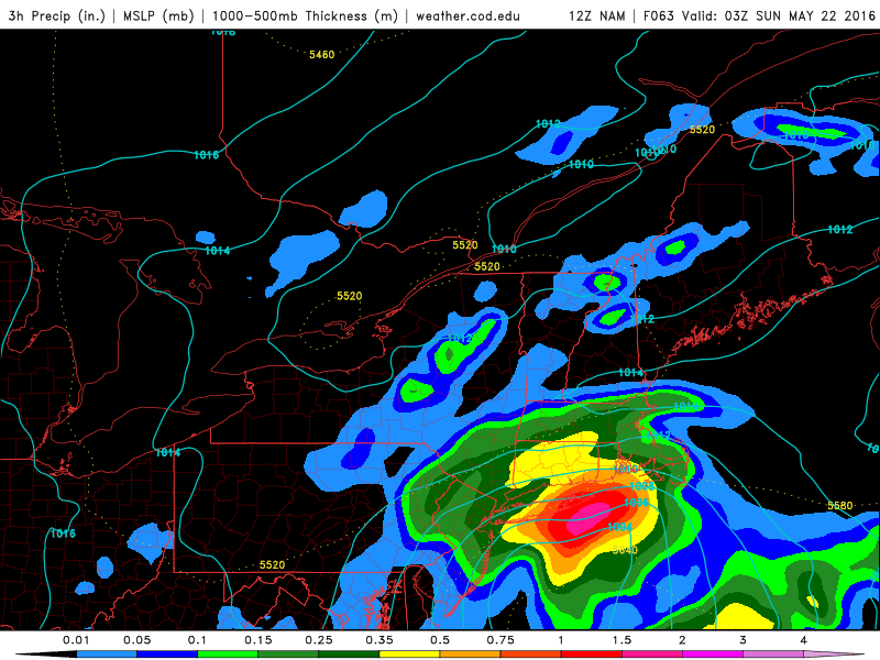NAM model showing a significant coastal storm impacting the area on Saturday with heavy rain.