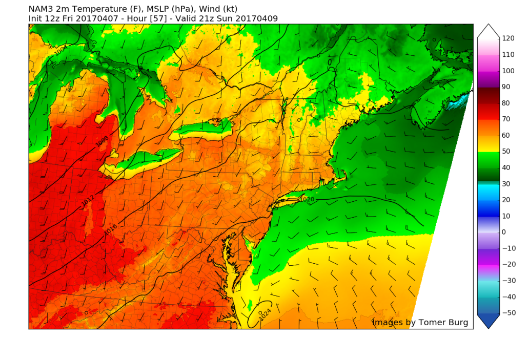 3km NAM showing temperatures reaching at or around 60 degrees areawide on Sunday afternoon (Valid 2pm)